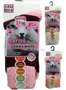 New Ladies Merino Lambs Wool Socks Soft Warm 2.4 Tog Thermal Winter 1,3,6 Pack