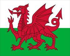 "10"" x 8"" WALES WELSH DRAGON FLAG CARDIFF SWANSEA WREXHAM METAL PLAQUE SIGN N074"