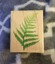 RUBBER STAMPEDE USED RUBBER STAMPS A1102E MONKEY PAW FERN PLANT GARDEN