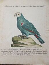 Antique hand-colored engraving by Saverio Manetti