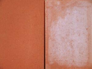 BPB Spezialreiniger C Kalkausblühungen Zementschleierreste Pflastersteine Beton