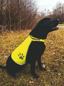 Personalised Korntex High Vis Dog Safety Vest  Add A Name  S M L FREE BANDANNA