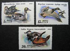 Russia 1991 6009-6011 MNH OG Russian Soviet Duck Conservation Set $2.00!!