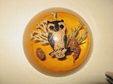 Vintage Lucite dome shape paperweight OWL image magnifying base