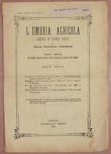 L'UMBRIA AGRICOLA 30 NOVEMBRE 1892 FOLIGNO PINOT CANAIOLO VINO WINE ENOLOGIA