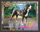 GREATER SWISS MOUNTAIN DOG ** Int'l Dog Postage Stamp ** Great Gift Idea*