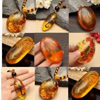 4Typ Bernstein Naturbernstein Scorpion Schmetterling Anhänger Halskette Amber DE