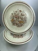 2 Dinner Plates Hedgerow Churchill Fence Homespun Staffordshire Stoneware Vintag