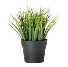 "IKEA mini artificial potted plant wheat grass 8"" lifelike nature herb deco Fejka"