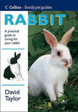 RABBIT., Taylor, David., Used; Very Good Book