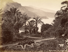 Monaco, Monte-Carlo, vue sur les jardins  Vintage albumen print,  Tirage album