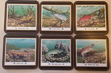 English Life Coasters Sport Fish Set of 6