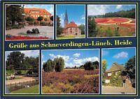 BG13033 schneverdingen luneburger heide   germany