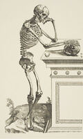 Framed Print - Human Skeleton Standing and Thinking (Picture Vintage Medical Art