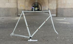 Gazelle Champion Mondial Columbus Frame / 58 cm / Silver / 2.616g / Campagnolo