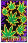 Legalize It Blacklight Poster 23 x 35