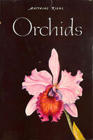 Orchids by Riehl, Matthias