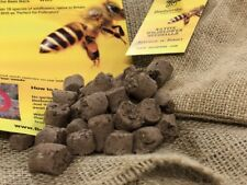 Beebomb Bee - Native Wildflower Seedballs Seed Balls (18 Species, Biodegradable)