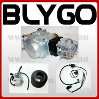 BT 125cc Kick Start Semi Auto Engine Motor + Wiring Kit+ Carby PIT PRO Dirt Bike