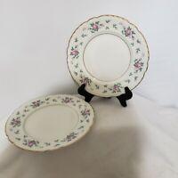 "PRINCESS China TRU TONE-SWEET BRIAR"" Pattern-Set of 2-8"" Salad Plates-USA"