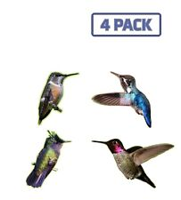 Hummingbird Multipack Sticker Vinyl Decal 4 Pack 1-529