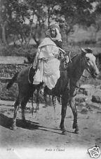 CPA Tunisie, Arabe á Cheval, (46956)