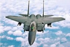 New 5x7 USAF Photo: F-15E Strike Eagle Fighter Jet of the 4th Fighter Wing
