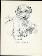 SEALYHAM TERRIER LOVELY VINTAGE 1930'S DOG ART PRINT by KF BARKER