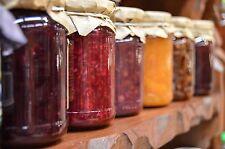 11 x 370ml Twist Round Favours Lolly Conserve Jam Preserving Honey Glass Jars