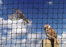 Garden Anti Bird Netting Heavy Duty Net Strong Soft Fruit Mesh 19mm 5M X 10M UK