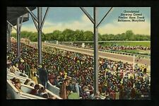 Horse Racing postcard Pimlico Race Track, Baltimore Maryland Md linen Curt Teich