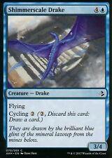 4x Shimmerscale Drake | NM/M | Amonkhet | Magic MTG