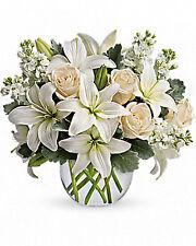 Teleflora Glas Bubble Vase - 11R400  - NEW -