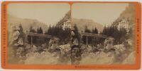 Suisse Tête-noire Foto Charnaux Stereo PL28Th1n26 Vintage Albumina c1875