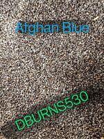 100,000+ Poppy Somniferum Afghan Blue Poppy Seeds