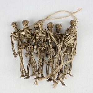 8Pc Skeleton Model Wholesale Learn Aid Anatomy Art Sketch Halloween Anatomy Bone
