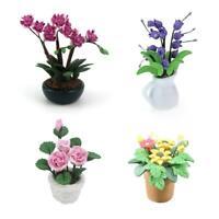 Mini Dollhouse Miniature Green Plant Flower in Pot Fairy Garden Decoration AU
