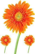 3 Pegatina adesivi adhesivo sticker coccion autoadhesiva habitacion flor naranja