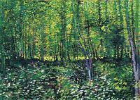 Trees and Undergrowth - Van Gogh HUGE A1 size 59.4x84cm Canvas Print Unframed