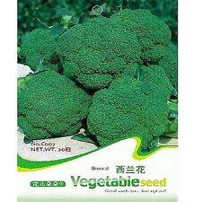 FD1880 Broccoli Seed Cauliflower Seed Green Vegetable Seeds ~1 Pack 50 Seeds~