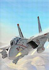 Postcard Aircraft F-14B Tomcat - modern card / large