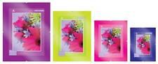 Frameless Frames Clip Frames Choice of 24 Sizes - Glass-11 Sizes Plastic-13Sizes