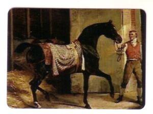 Beautiful  Black Arabian  Horse and a Man -- Modern Wide Linen Swap Playing Card