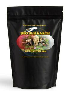 Pure (no fillers) Quercetin Powder 40 grams - Sophora Japonica