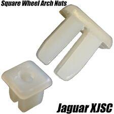Jaguar ROUE ARCH Doublure /& Seuil Moulage Clips 6.5 mm TROU EN PLASTIQUE C2S9354020 X20