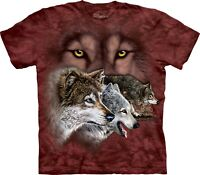 Find 9 Wolves Wolf T Shirt Adult Unisex The Mountain