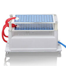 Heavy Duty AC 110V 10000 Mg/H (10g) Ozone Generator With Blue Plates Treatment