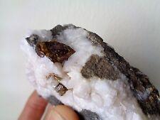 Gem Sphalerite crystalsSpecimen with Dolomite on Matrix, Rare Location.