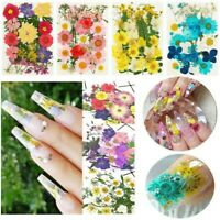 DIY Real Dried Flower Face Sticker Decor Manicure Tips Nail Art Decorations