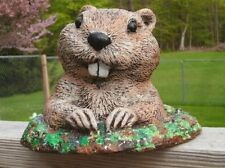 Gopher in Dirt- Groundhog Hand Painted camouflage Concrete Statue